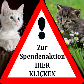 1_Spendenaktion2.png